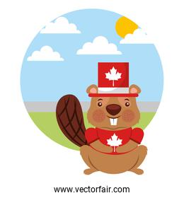 beaver of canada with hat and landscape isolated icon