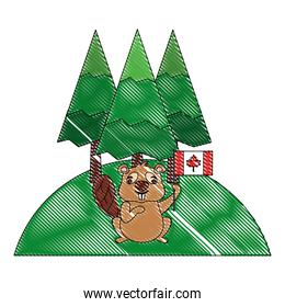 beaver of canada with flag and landscape isolated icon