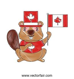 beaver of canada with hat and flag isolated icon