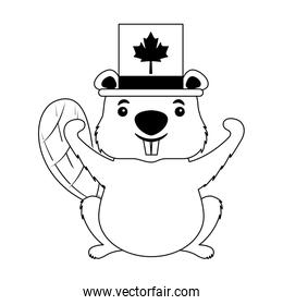 beaver of canada with hat isolated icon