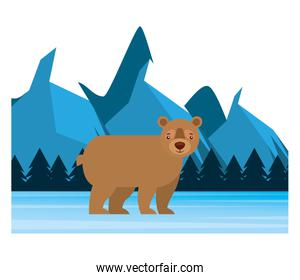 bear grizzly in winter forest landscape