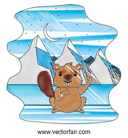 beaver of canada with landscape snowly