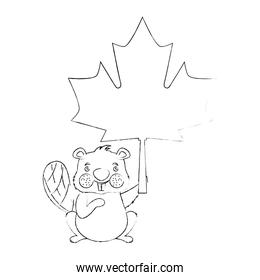 beaver of canada with maple leaf
