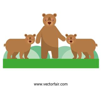 cute family grizzly bears in forest