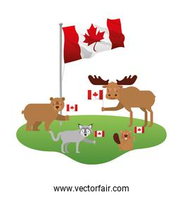 cute wolf bear moose and beaver with canadian flag