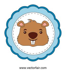 lace masculine beaver animal isolated icon