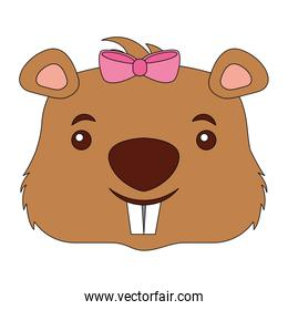 head female beaver animal isolated icon