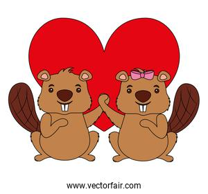 beavers animal with heart isolated icon