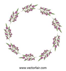 wreath berries and leaves floral decoration