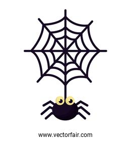 halloween spider with spiderweb isolated icon