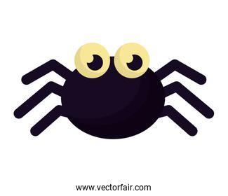 halloween spider isolated icon