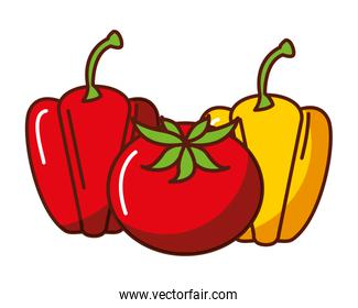 bell peppers and tomato mexican food traditional