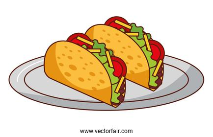 tacos in dish mexican food traditional