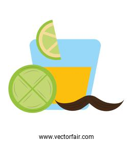 tequila in glass drink slice lemon mexican