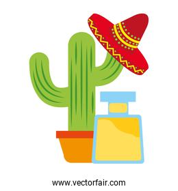 tequila bottle cactus and hat drink mexican