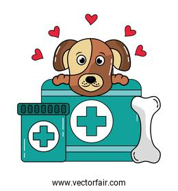 dog with bone and medical kit pet veterinary care