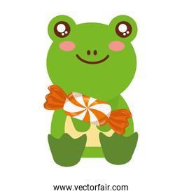 cute frog with sweet candy