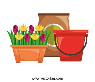 potted flowers and bucket sack soil gardening