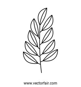 branch leaves linear on white background