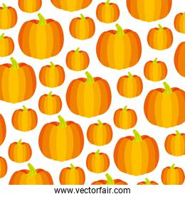 golden pumpkin vegetable fresh pattern