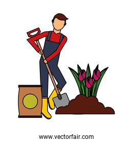gardener man planting flowers with shovel gardening