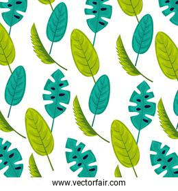exotic nature leaves tropical background