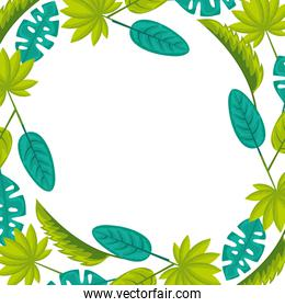 frame decoration natural leaves tropical