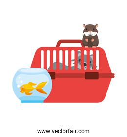 cat on cage hamster and goldfish