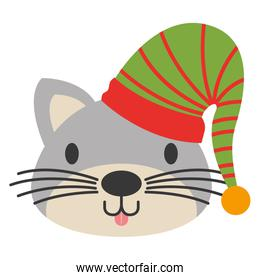 cute cat with warm hat christmas