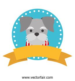 pet dog ribbon label emblem