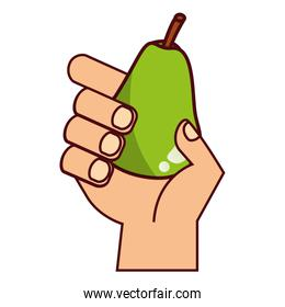 hand with pear on white background