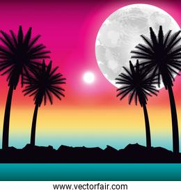 tropical beach palms moon ocean scenery