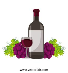 wine bottle cup and fresh grapes