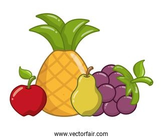 pineapple apple grapes pear fruits