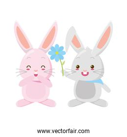 cute couple rabbits with flower