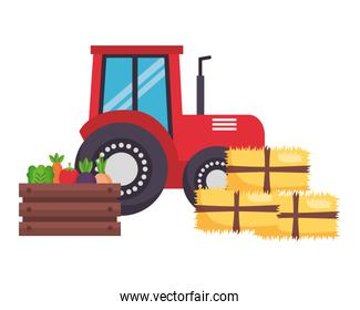 tractor truck bales of hay and vegetables