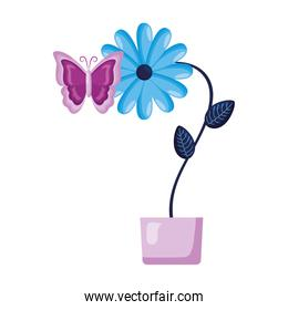 potted flower butterfly