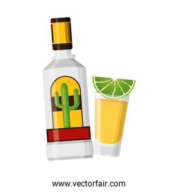 mexican bottle tequila shot
