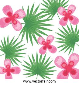 tropical flowers leaves foliage background