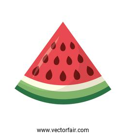 Isolated watermelon fruit vector design