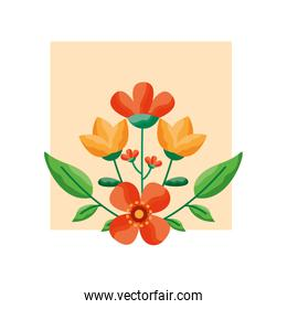 Isolated flowers card vector design
