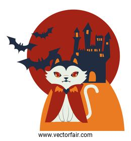 halloween cat disguised of dracula character