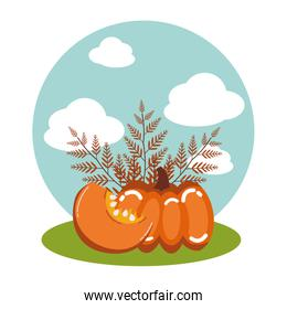 pumpkins of autumn with branches leafs