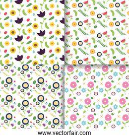flowers decoration banner collection