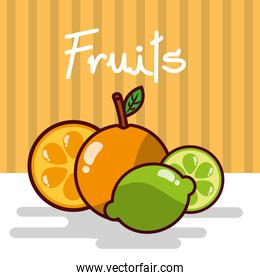 orange and lemon fruits fresh juicy collage