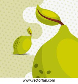 fresh fruit natural lemon on dots background