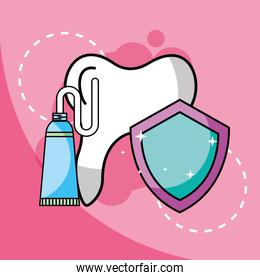 toothpaste tooth dental protection
