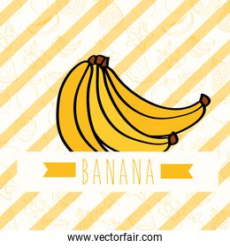 striped background with delicious fresh nature banana