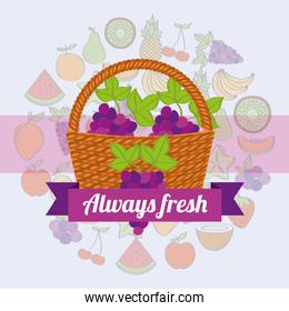 label wicker basket with always fresh grapes