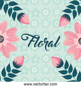 pink flowers sprouts nature bloom floral background